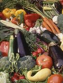 image of cornicopia  - A vegetable banquet of many different veggies - JPG