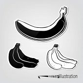 Set of vector decorative bananas