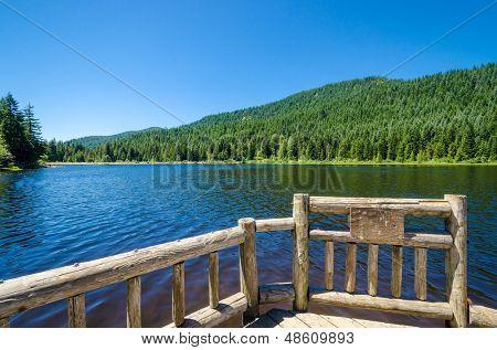 Fragment of Trillium Lake Oregon, USA.