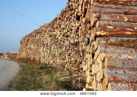 Renewable Energy  - Logging