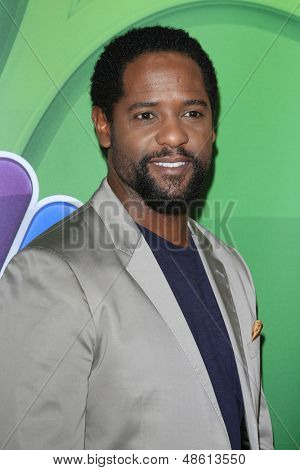 LOS ANGELES - JUL 27:  Blair Underwood at the NBC TCA Summer Press Tour 2013 at the Beverly Hilton Hotel on July 27, 2013 in Beverly Hills, CA