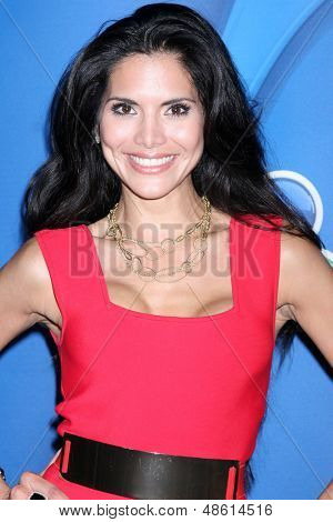 LOS ANGELES - JUL 27:  Joyce Giraud at the NBC TCA Summer Press Tour 2013 at the Beverly Hilton Hotel on July 27, 2013 in Beverly Hills, CA