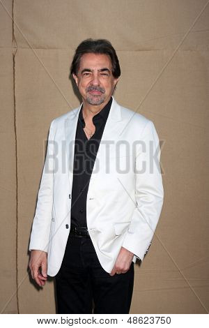LOS ANGELES - 29 de JUL: Joe Mantegna chega na festa de verão 2013 CBS TCA no local privado