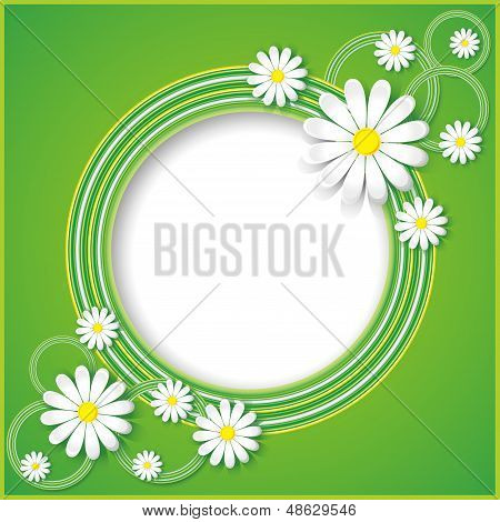 Green Abstract Background With Flowers Chamomiles