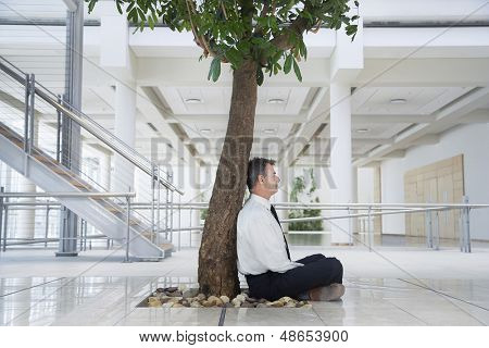 Full length side view of middle aged businessman meditating under tree in office