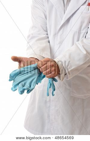 Doctor Or Scientist Putting On Gloves