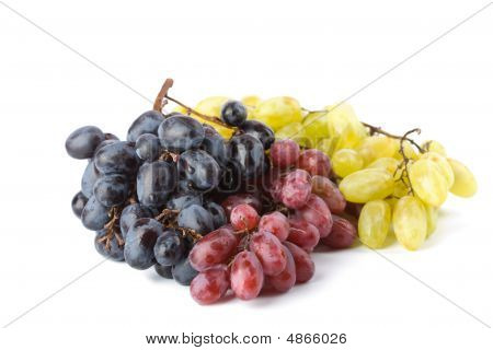 Colorful Ripe Grapes Isolated