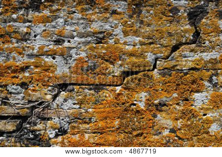 Cracked Stone Wall With Orange Moss