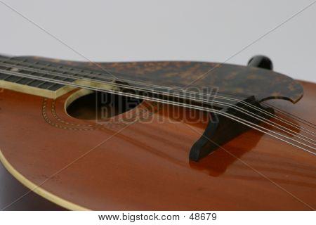 Mandolin Close