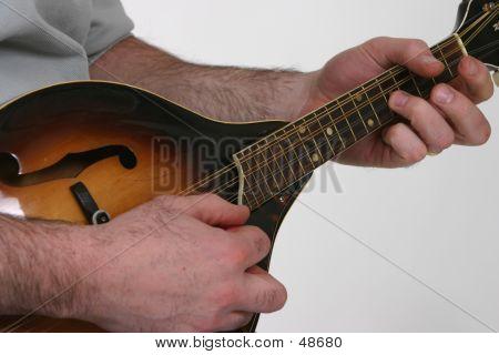 Playing Mandolin