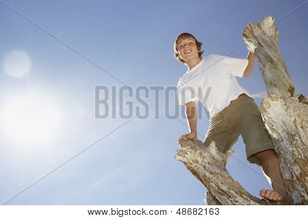 Low angle portrait of happy young boy climbing on dead tree trunk