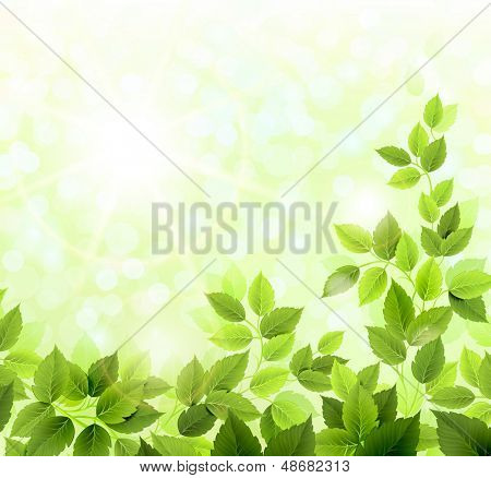 Summer glade with fresh green leaves