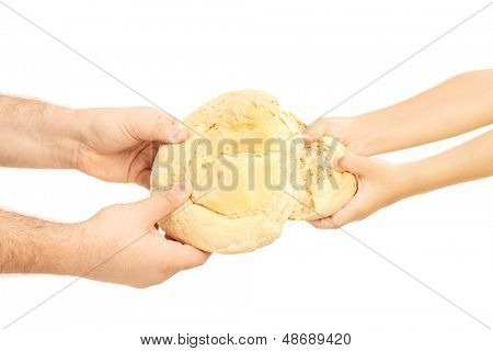 Man and child breaking apart a bread loaf isolated on white background
