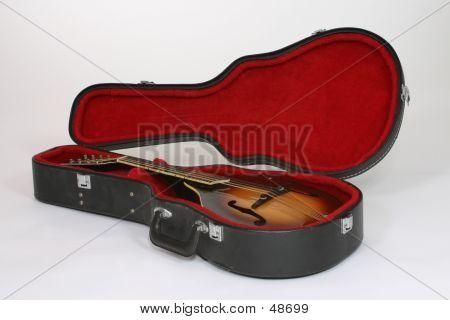 Mandolin In Case