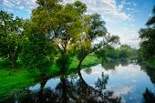 stock photo of brest  - Summer landscape with river Mukhavets - JPG