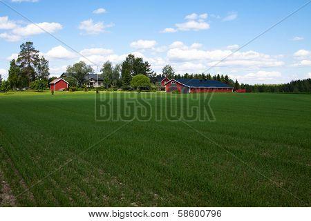 Finland Farm
