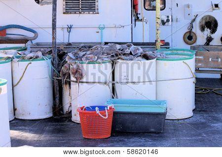 Barrels Of Bait