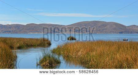 Lake Titicaca Reed Landscape