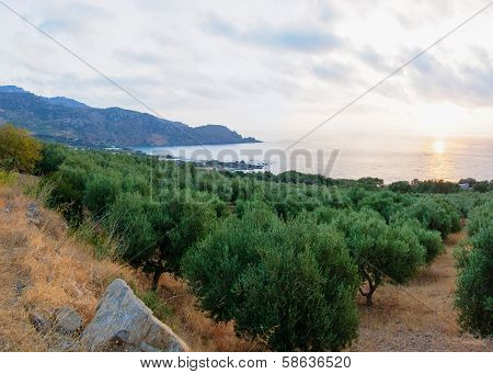 Sunset scenery of a Cretan landscape, island of Crete, Greece