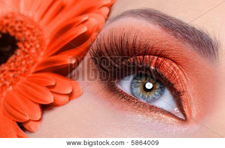 False Eyelashes And Fashion Orange Eye Make-up