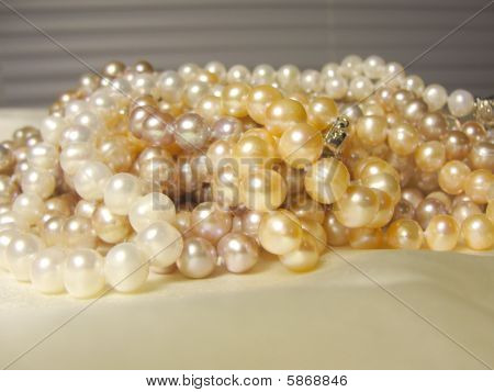 A Pile of Precious Pearls