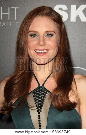 Christiane Seidel Dignity Gala and Launch of Redlight Traffic App, Beverly Hilton Hotel, Beverly Hills, CA 10-18-13
