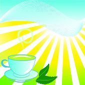 cup of tea with mint on beautiful sunny background poster