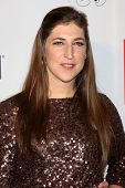 Mayim Bialik at the 2013 GLSEN Awards, Beverly Hills Hotel, Beverly Hills, CA 10-18-13