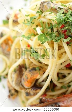Italian Pasta On White Background