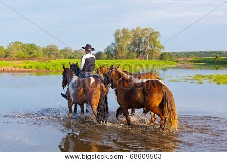 cowboy fords through the river with horses