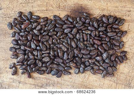 Peeled Cocoa Beans