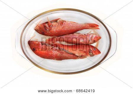 Raw Redfishes Isolated