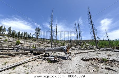 Rainbow Falls Trail, Devil's Postpile National Monument