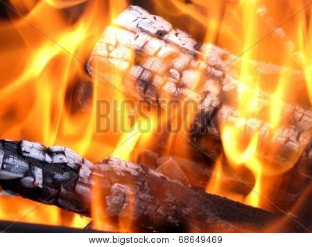 Logs in the fire