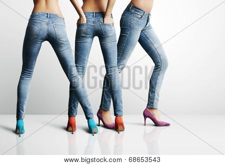 Fashion Woman's Legs