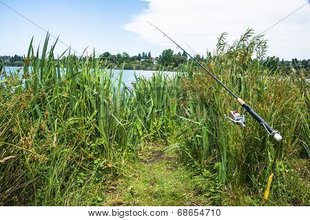 Recreational Fishing Rod By Lake