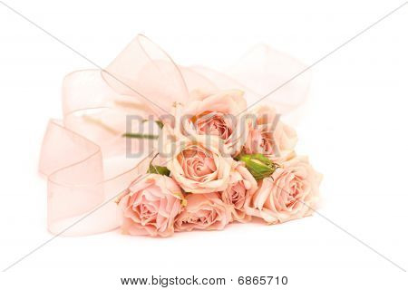 Pink Roses And Ribbons On White Background