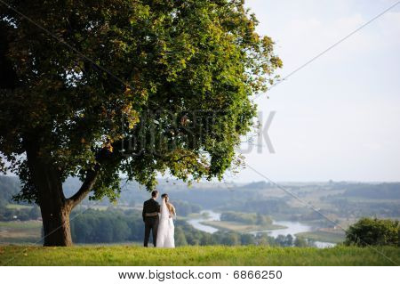 Bride And Groom Standing Under An Oak