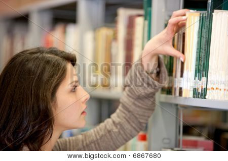 Woman At The Librry