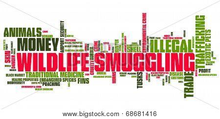 Animal Smuggling