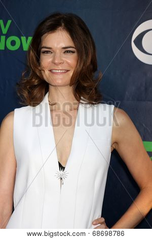 LOS ANGELES - JUL 17:  Betsy Brandt at the CBS TCA July 2014 Party at the Pacific Design Center on July 17, 2014 in West Hollywood, CA