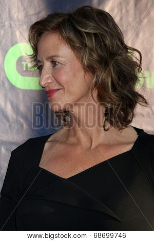 LOS ANGELES - JUL 17:  Janet McTeer at the CBS TCA July 2014 Party at the Pacific Design Center on July 17, 2014 in West Hollywood, CA