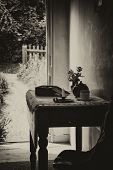 pic of victorian houses  - Vintage Antique Sepia victorian English Country Garden View From Indoors - JPG