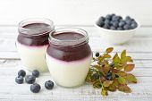 pic of panna  - Dessert panna cotta with fresh blueberry on wooden background
