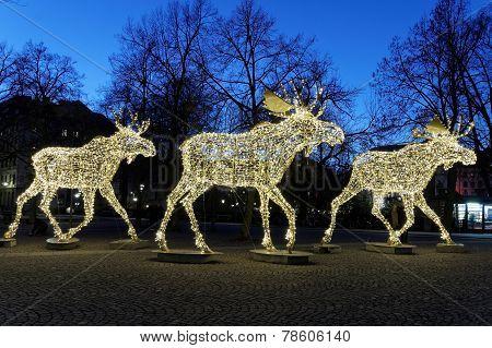 Christmas Moose Herd Made Of Led Light