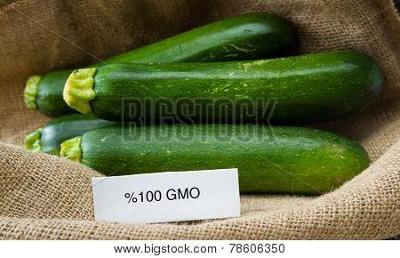 Fresh Gmo Zucchini