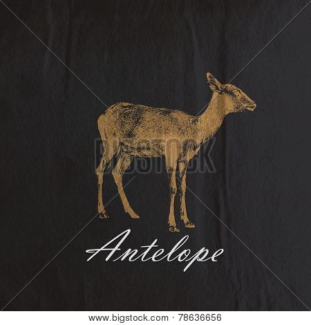 vector vintage illustration of an antelope or goat on the old wr