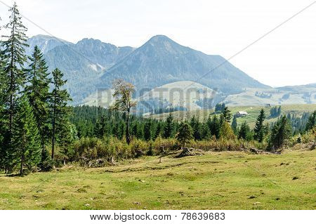 Large View At The High Mountains Alps