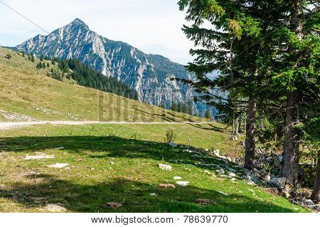 Footpath In The Alps