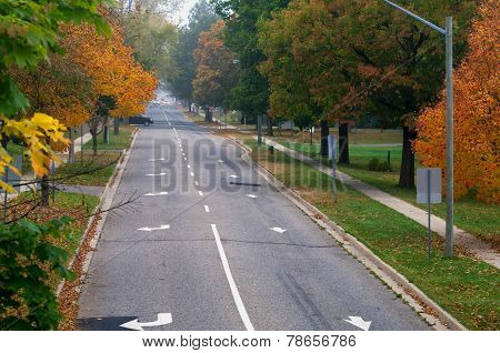 Fall Colours On A Tree Lined Street